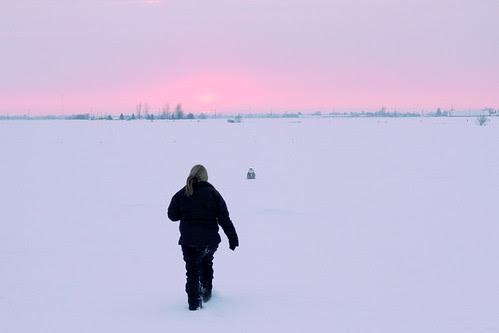 Snowy at Sunset by Megan Lorenz
