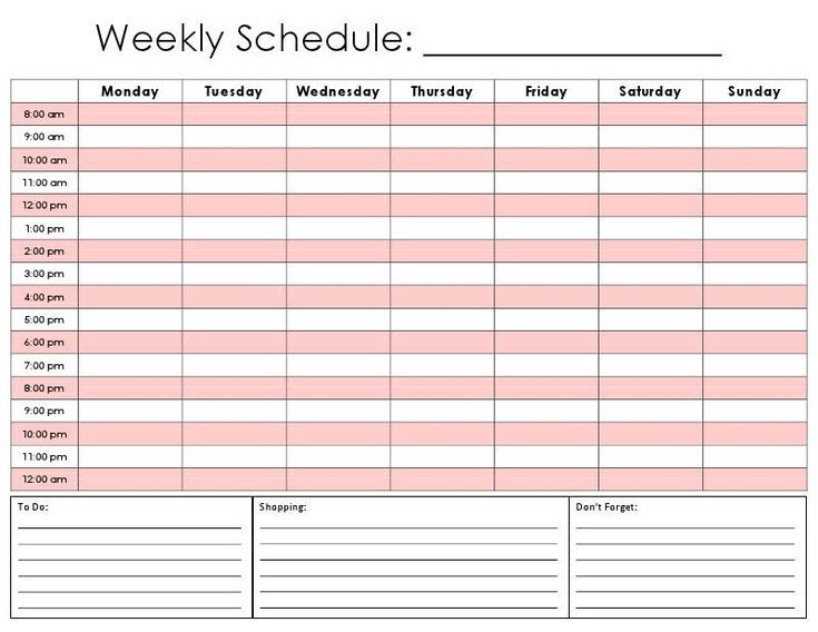 Daily Schedule Calendar   Daily Planner
