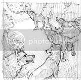 sketch,art,wolf,wolves,moon,mystical,moonlight,woods,forest