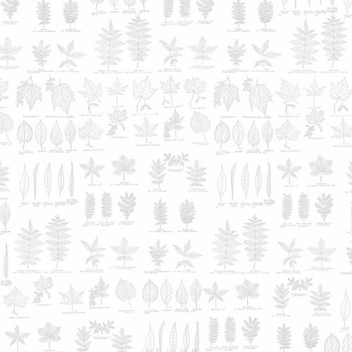 20-cool_grey_light_NEUTRAL_graphics_fairy_LEAVES_12_and_a_half_inch_SQ_350dpi_melstampz