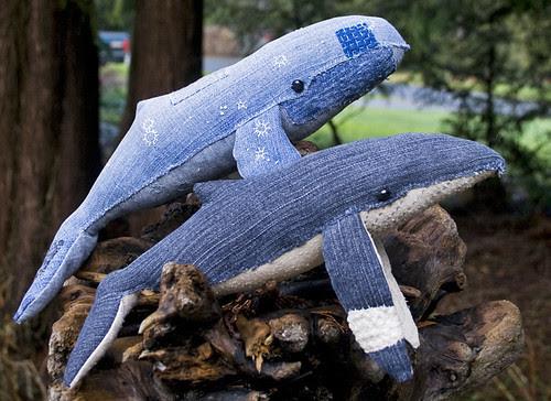 grey whale & minke whale