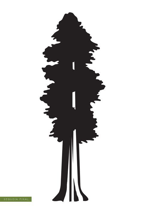 Sequoia Silhouette at GetDrawings.com   Free for personal