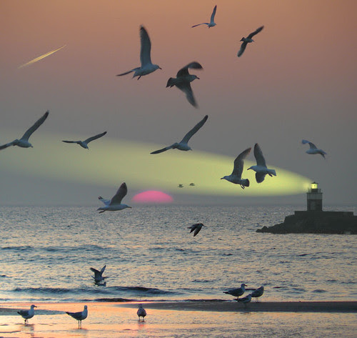 My fairytale lighthouse por B℮n