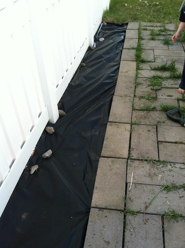 get rid of weeds in patio