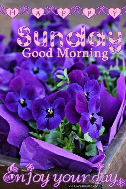 Sunday Good Morning Enjoy Your Day Pictures Photos And Images For