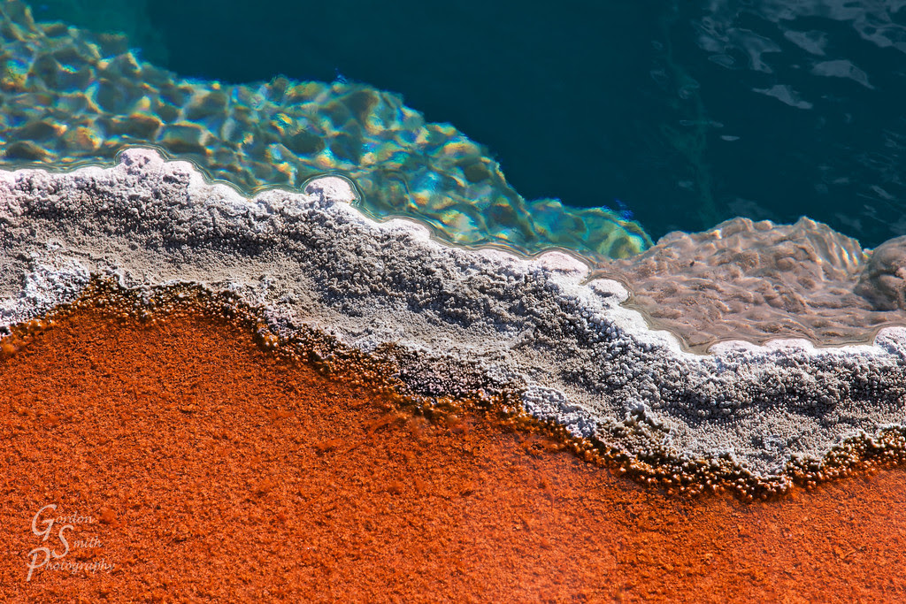 Colorful bacterial matte yellowstone park