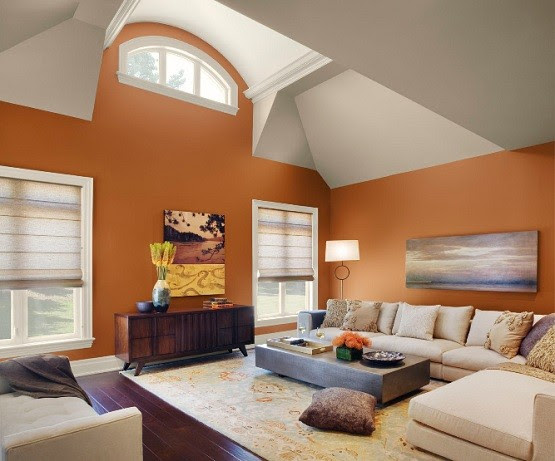 Paint Color Schemes Living Room Ideas | Home Interiors