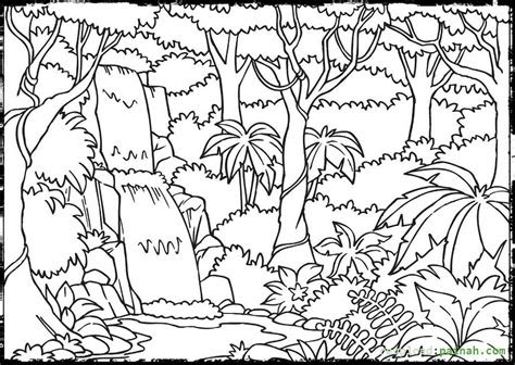rainforest coloring pages    print