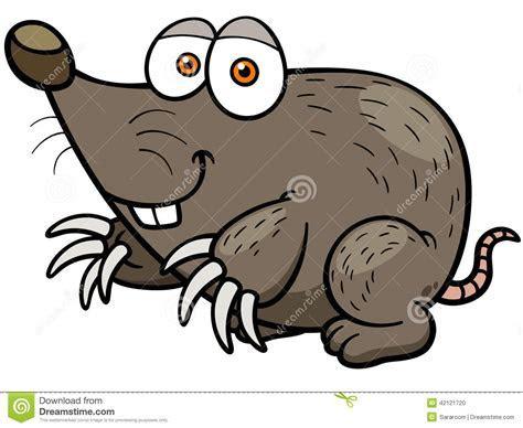 Mole Stock Vector   Image: 42121720