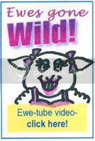 Ewes Gone Wild