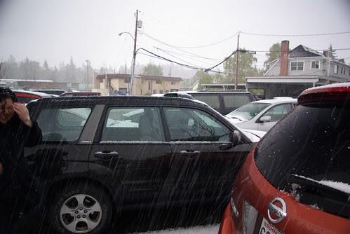 2008-04-19 Sleet Storm in MT Vernon