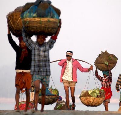 Agricultores indios transportan sus cultivos para la venta.