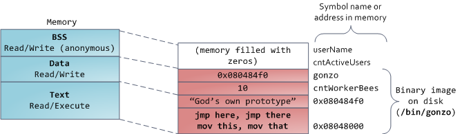 ELF Binary Image Mapped Into Memory