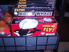 flying killer whale