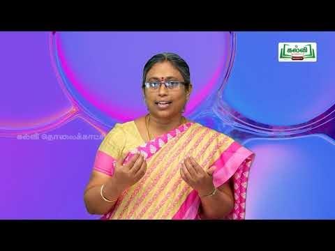 8th Tamil Bridge Course சொந்த நடையில் எழுதுதல், விழுமியங்களை நாள் 7,8 Kalvi TV