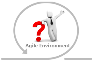 QA Manager in Agile Environment