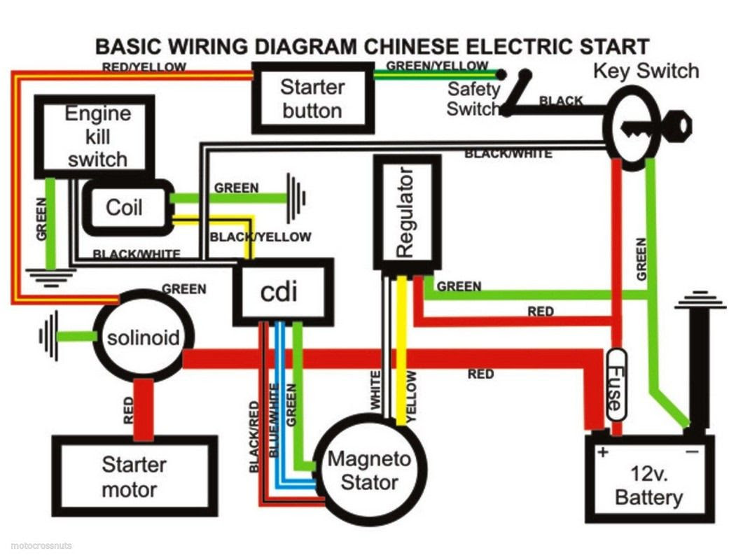 49cc Mini Harley Wiring Diagram Wiring Diagram Assembly Assembly Cfcarsnoleggio It