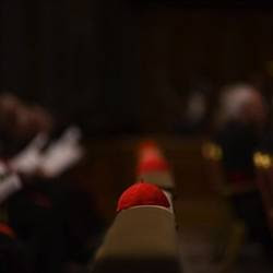 Dentro il Vaticano