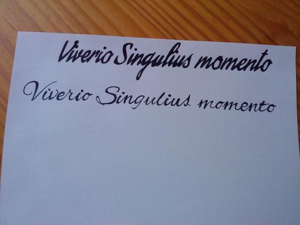 Latein Zitate Tattoo Sprüche Zitate Leben