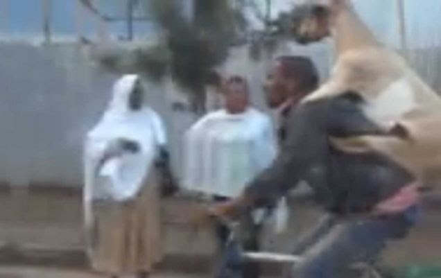 A man has been filmed cycling down a busy road in Addis Ababa while giving a goat a piggyback