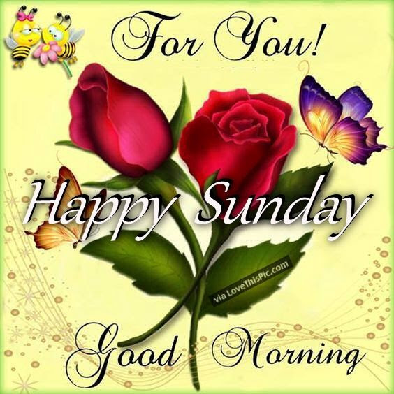For You Happy Sunday Good Morning Pictures Photos And Images For