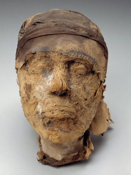 More than 100 years after the discovery of the 4,000 year-old Djehutynakht tomb, the sex and identity of the mummy head was finally determined by the joint work of FBI, Harvard University and the DHS Science and Technology Directorate (S&T).