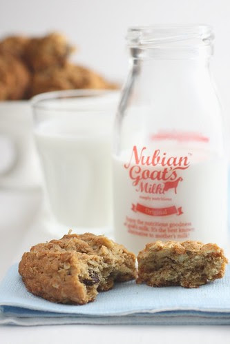 Oatmeal Cookie 5