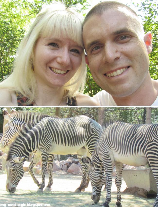 Denver Zoo us and zebras