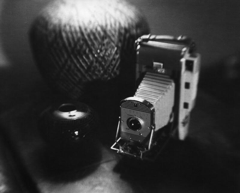 Polaroid001a