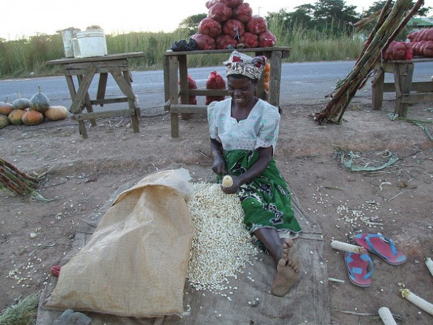 Agricultural Trade Liberalization Undermined Food Security - Africa has been transformed from a net food exporter into a net food importer, while realizing only a small fraction of its vast agricultural potential. Credit: Busani Bafana/IPS