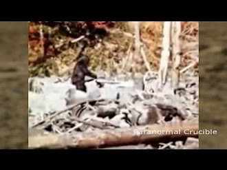 Bigfoot/Yeti Caught On Mars? / Big foot visto en Marte?
