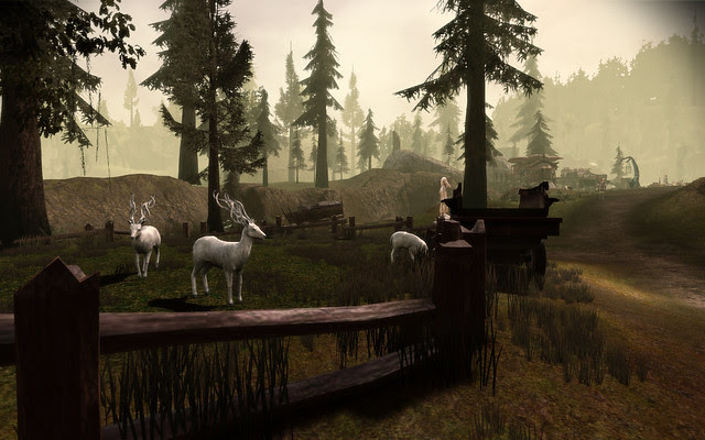 Dalish Camp (Brecilian Forest) 009