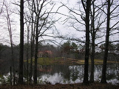 The house from the lake path.