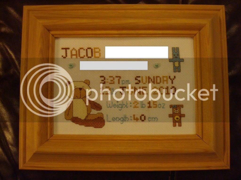 DSC01774JacobAnon_zpsea218d1d.jpg Jacob's Birth Sampler