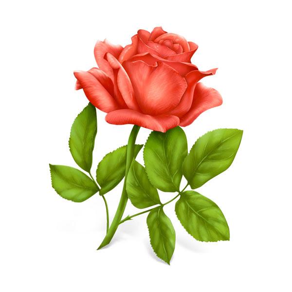 無料素材 陰影やグラデーションを滑らかに描いた油絵タッチのバラの
