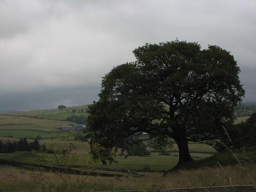 Beautiful Cumbria