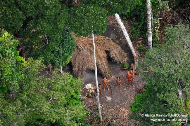 last uncontacted tribes01 650x432 Breathtaking photos of one of the worlds last uncontacted tribes