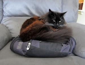 bag-seat-on-seat-2