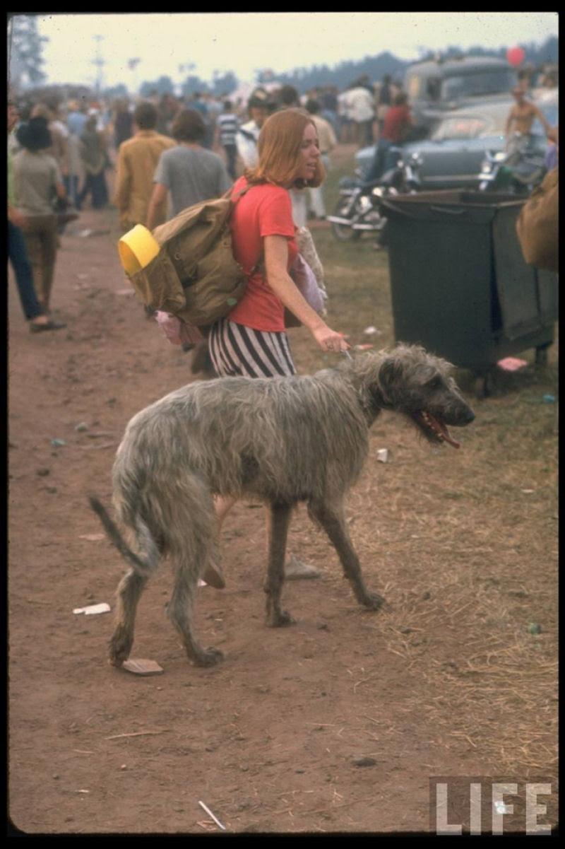 O festival de Woodstock em números e imagens 50