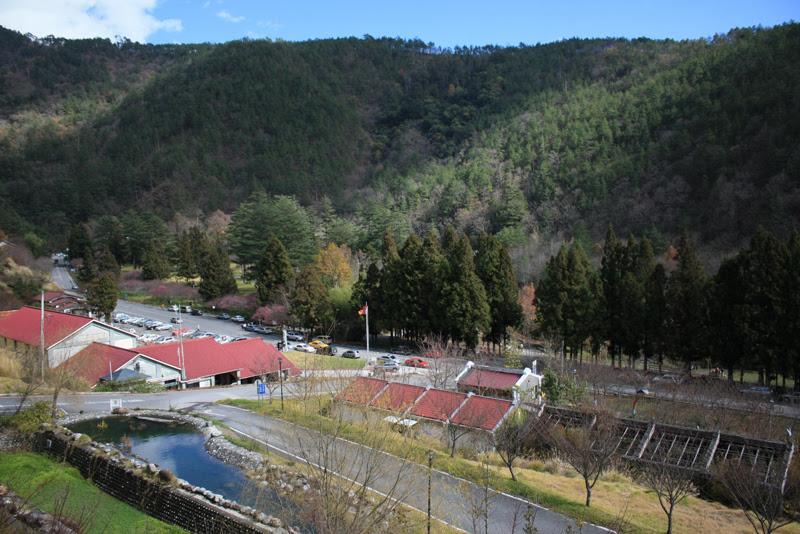 2010.01.01-02 武陵農場