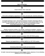 Thumbnail of Timeline of clinical events in a pregnant patient with Middle East respiratory syndrome coronavirus (MERS-CoV) infection, Abu Dhabi, United Arab Emirates, 2013. ICU, intensive care unit.