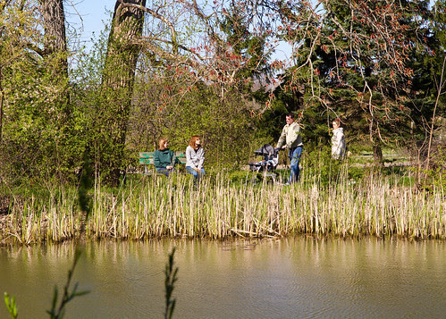 Pond Viewing