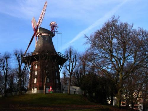 beautiful windmill