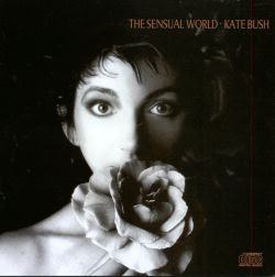 The Sensual World