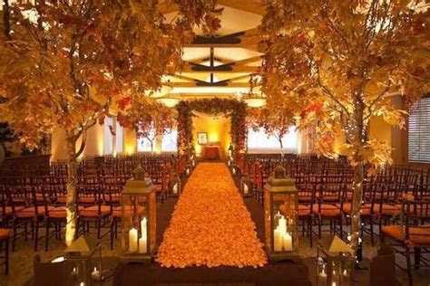 Autumn Tree 2.8m / 9.2 ft in 2019   Autumn Event   Wedding