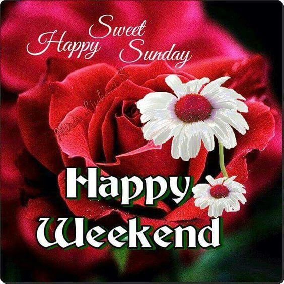 Sweet Happy Sunday Happy Weekend Pictures Photos And Images For