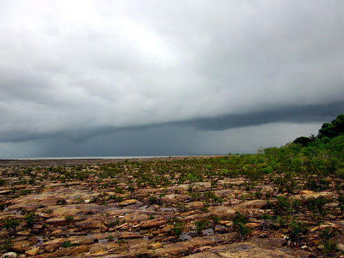 Monsoon Nightcliff