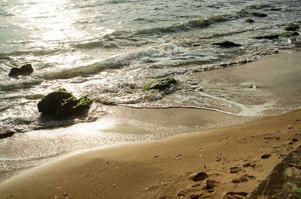 Washing ashore at Sunset