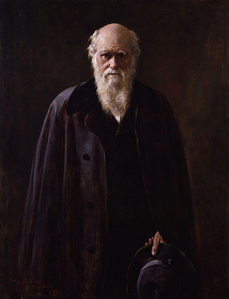Ficheiro:Charles Robert Darwin by John Collier.jpg