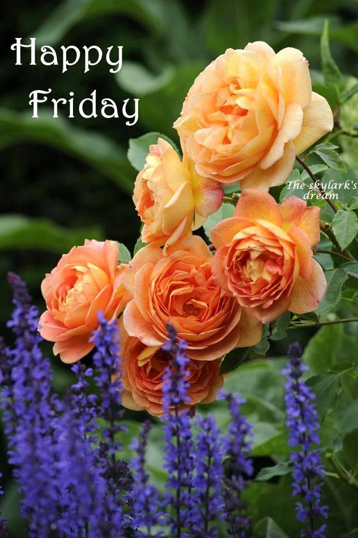 Happy Friday Flowers Image Quote Pictures Photos And Images For